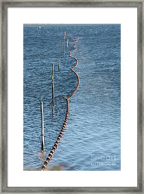 Fishing Nets Framed Print by Rogerio Mariani