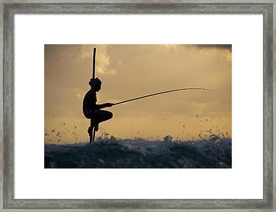 Fishing Framed Print by Ng Hock How