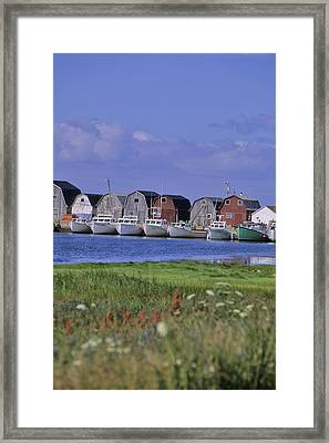 Fishing Shacks Line The Bay At Malpeque Framed Print by Leanna Rathkelly