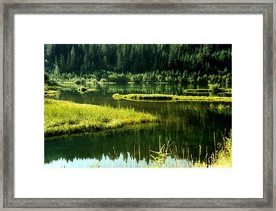 Framed Print featuring the photograph Fishing The Still Water by Katie Wing Vigil