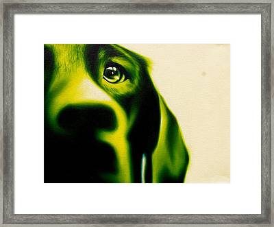 Fixated Framed Print by Theresa Crawford