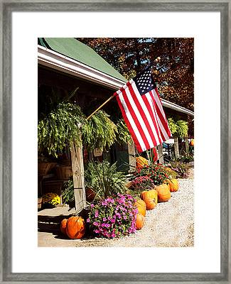 Flag Among The Pumpkins Framed Print by Judith Lawhon