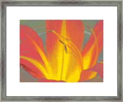 Flames Framed Print by Wide Awake Arts