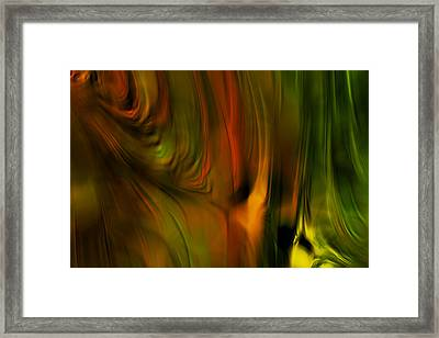 Flaming Color Framed Print by Bonnie Bruno