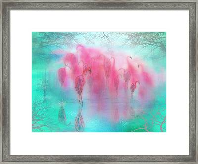 Flamingo Dreams Framed Print by Laura George