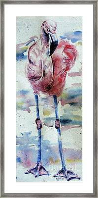 Flamingo Mist Framed Print