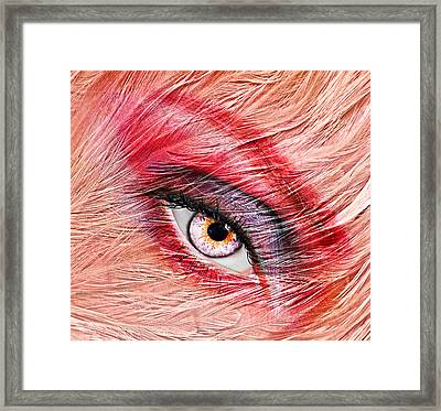 Flamingo Framed Print by Yosi Cupano