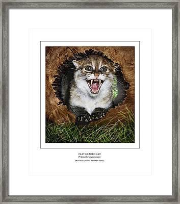Flat Headed Cat Prionailurus Planiceps Framed Print by Owen Bell