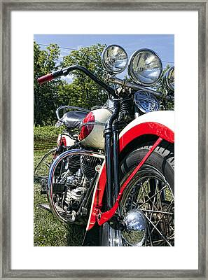 Flathead Framed Print by Peter Chilelli