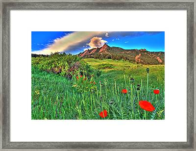 Flatirons And Poppies Framed Print by Scott Mahon