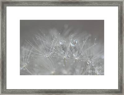 Fleur Cristalline Framed Print by Sylvie Leandre