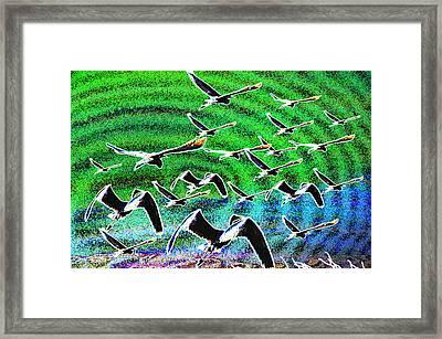 Flight Into Oblivion Framed Print
