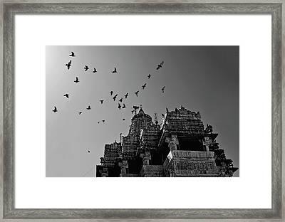 Flight Of Birds Above Jadgish Temple Framed Print by Prashanth Naik