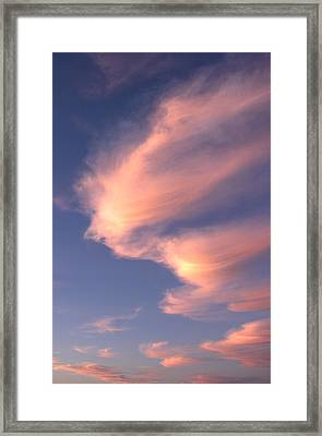 Flight Of Fancy Framed Print by John  Bartosik