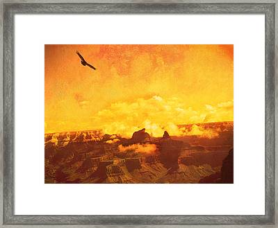 Framed Print featuring the photograph Flight Over Grand Canyon by James Bethanis