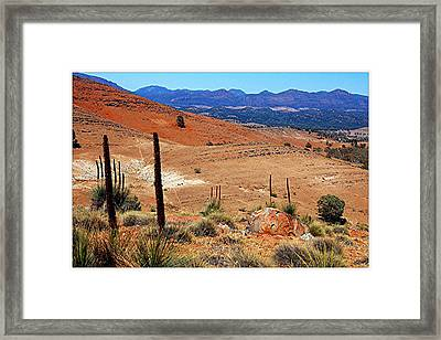 Flinders Ranges Hucks Lookout Framed Print by Patricia Tapping