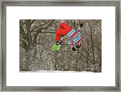 Flippin' Framed Print by Lois Bryan
