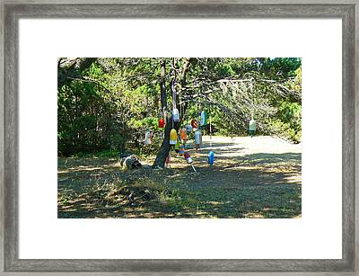 Framed Print featuring the photograph Float Tree by Pamela Patch