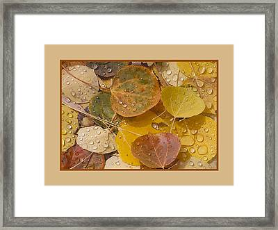 Floating Aspen Leaves Framed Print