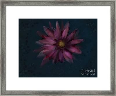 Floating Flower Framed Print