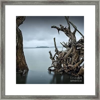 Floating Island Framed Print by Michael Howard