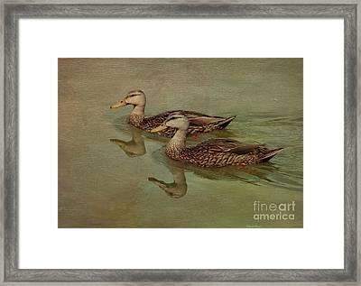 Floating On By Framed Print by Deborah Benoit