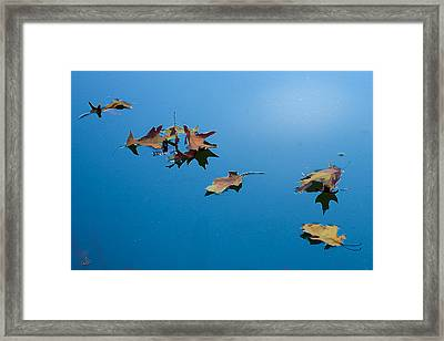 Floating On The Sky Framed Print