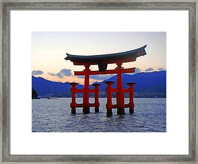Floating Tori Framed Print