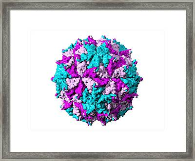 Flock House Virus Particle Framed Print by Laguna Design