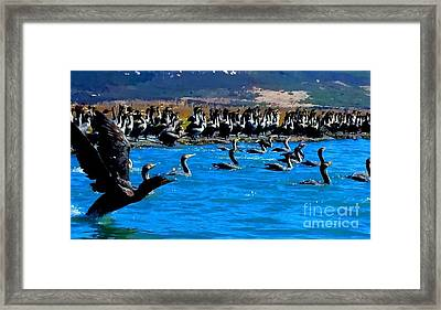 Flock Framed Print by Tap On Photo