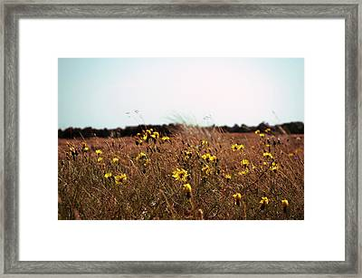 Flora Framed Print by Photography by Daniel Hans Peter Christensen