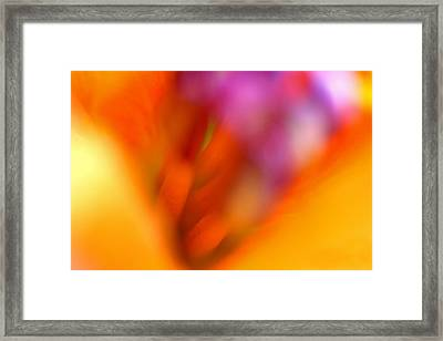 Floral Abstraction Framed Print by Juergen Roth