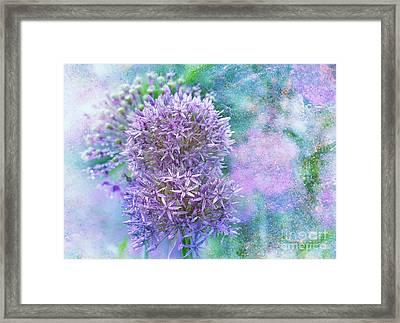 Floral Burst Framed Print by Elaine Manley