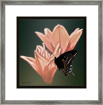 Floral Butterfly Dance Framed Print by Debra     Vatalaro