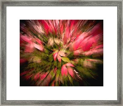 Floral Fun Framed Print
