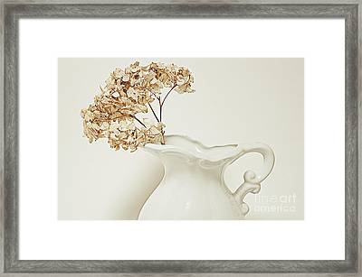 Floral Framed Print by HD Connelly