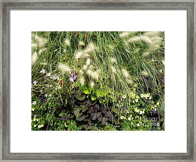 Floral Life 2 Framed Print by Rogerio Mariani
