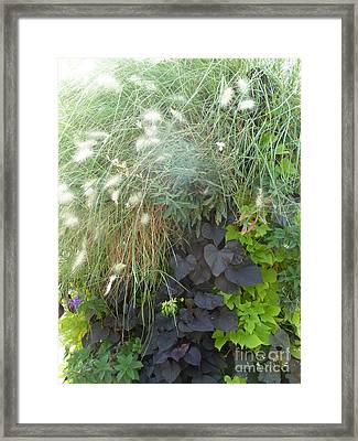 Floral Life Framed Print by Rogerio Mariani