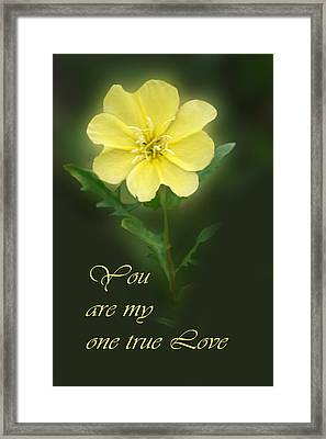 Floral My One True Love Framed Print by Linda Phelps