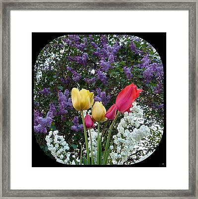 Floral Profusion Framed Print