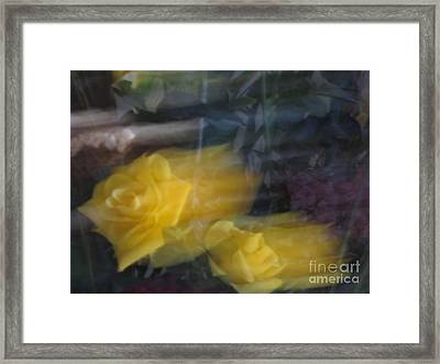 Florals In Motion 7 Framed Print by Cedric Hampton