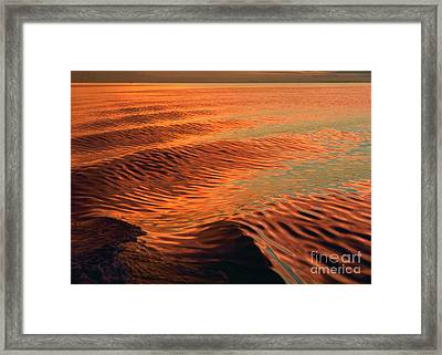 Framed Print featuring the photograph Florida Bay by Doug Herr