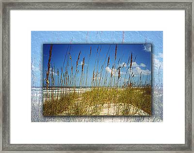 Perfect Day At A Florida Beach Framed Print by Barbara Middleton