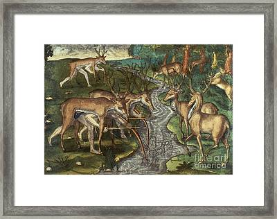 Florida: Hunters, C1591 Framed Print