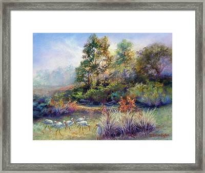 Florida Ibis Landscape Framed Print by Denise Horne-Kaplan