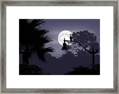 Florida Moonlight Framed Print by Ginny Schmidt