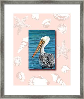 Florida Pelican With Seashell Border Framed Print by Peggy Dreher