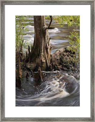 Framed Print featuring the photograph Florida Rapids by Steven Sparks