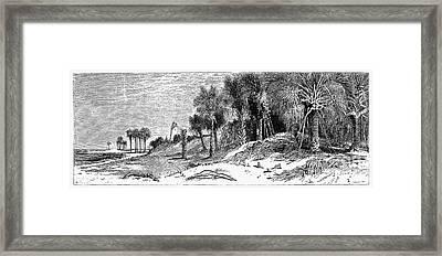 Florida: St. Johns River Framed Print by Granger