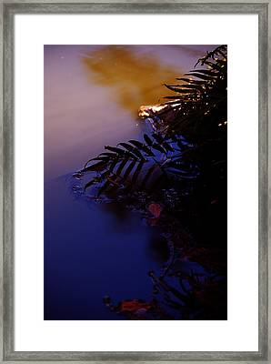 Florida Sunset 2 Framed Print